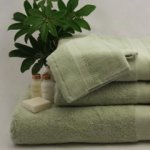 Organic Cotton Hand Towel - Sage